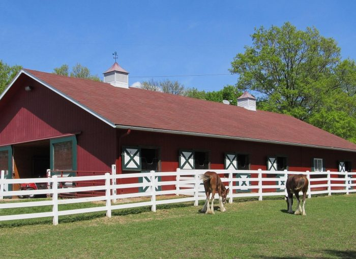 horse-property-for-sale