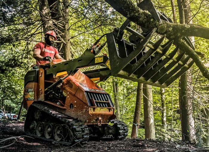 davey tree service reviews